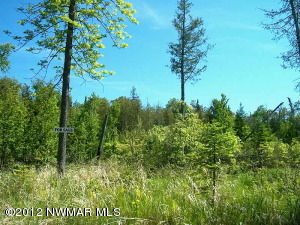County Road 331 Road, Angle Inlet, MN 56711