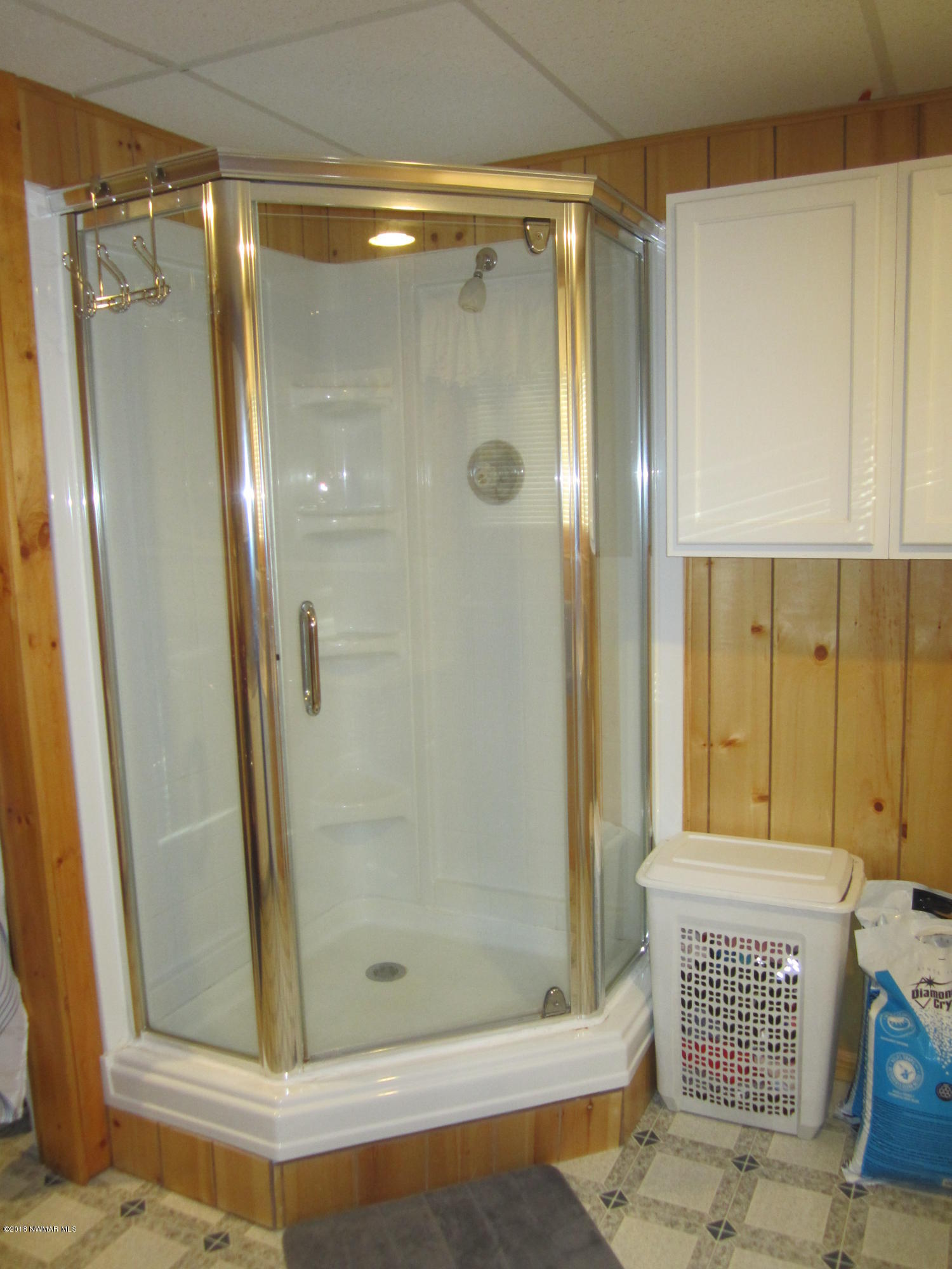 Basement shower-approx 5 yrs. old