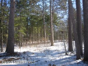 Nicely private, 3/4 acre wooded lot