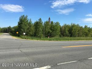 TBD Co Rd 91 Road, International Falls, MN 56649