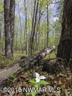 TBD Osprey Trail, Tract 3, Laporte, MN 56461