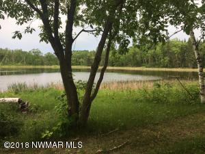 54432 Sandy River Drive, Leonard, MN 56652