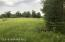 Another food plot