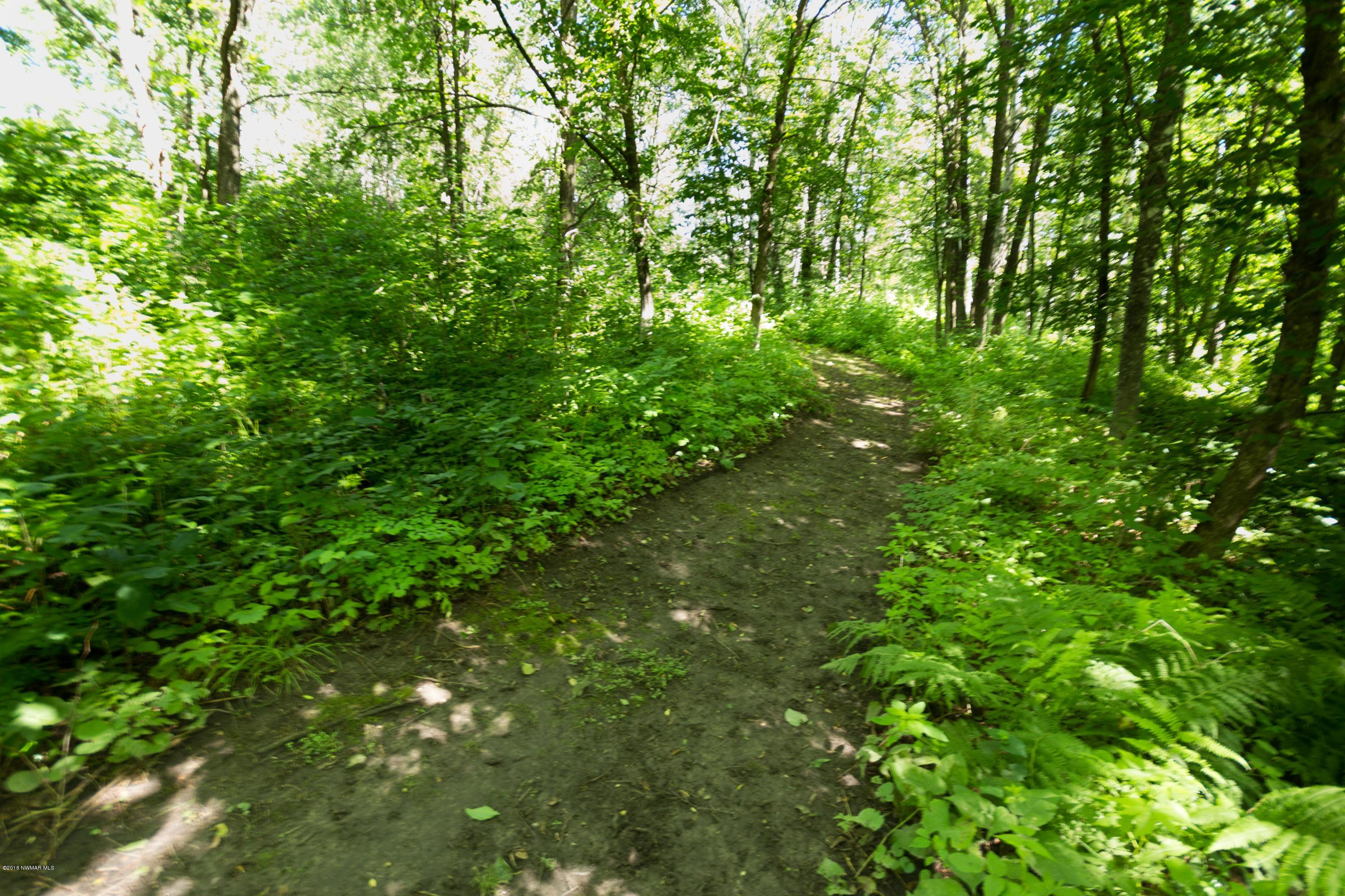 Groomed Trail 2