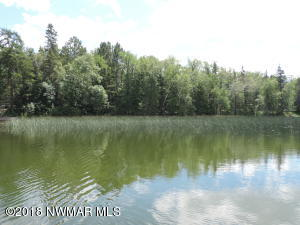 TBD-1 S Steamboat Lake Drive NW, Cass Lake, MN 56633