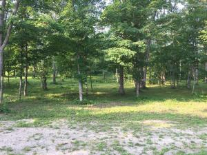 TBD County 3 Road, Shevlin, MN 56676