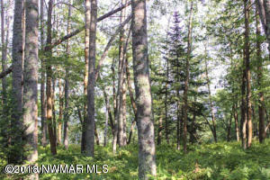 Lakeridge Lane NW, Lot 12, Bemidji, MN 56601