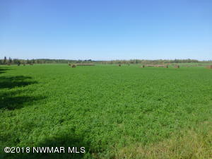 Pleasant Valley Road NW, Puposky, MN 56667