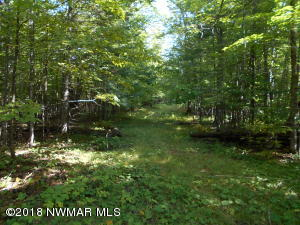 Hudson Bay Court NW, Lot 8, Bemidji, MN 56601