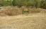 9661 S GULL LAKE Road NE, Tenstrike, MN 56683