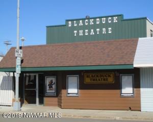 56 Main Street N, Blackduck, MN 56630