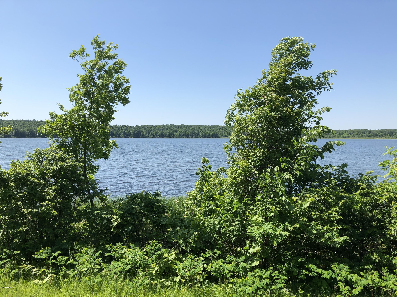 27894 Clearwater Lake Road, Leonard, MN 56652 (MLS# 19-514) - Pahlen