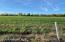 Property is staked in 4 5 acre parcels. Keep them all or sell some off!
