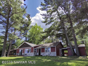 51294 Wildview Lane, Bemidji, MN 56601