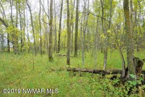 Youngs Bay Drive NW, Lot 2, Angle Inlet, MN 56711