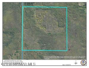 TBD Co. Rd. 1 Road SW, Baudette, MN 56623