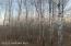 TBD White Sage & Boneset Drive NW, Bemidji, MN 56601
