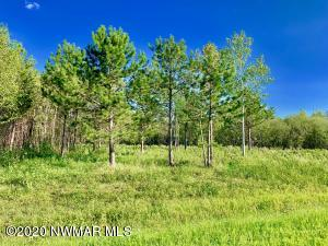 TBD Pine Ridge Lane NW, Baudette, MN 56623