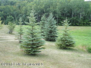 Nicely wooded 19.5 acre site