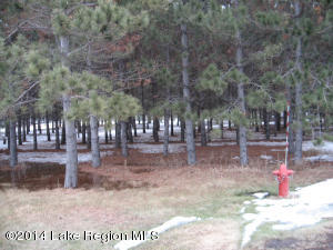120 Red Pine Trail, Ottertail, MN 56571