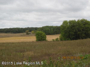 . County Road 134 -, Henning, MN 56551