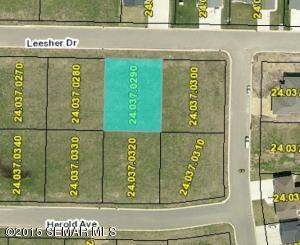 8795 Leesher Drive, Minnesota City, MN 55959