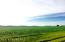 TBD 63 Highway, Spring Valley, MN 55975