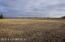 TBD County Road 2, Chatfield, MN 55923