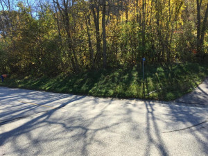 L Blk County 77, Reads Landing, MN 55968
