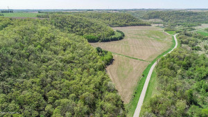TBD Wabasha County Rd 5, Lake City, MN 55041