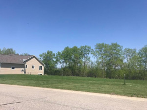 1424 Woodland Way, Lake City, MN 55041