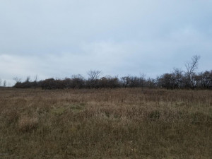 TBD 714th Street, Lake City, MN 55041