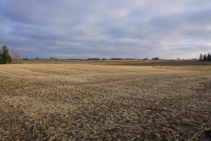 TBD County Road 2, Chatfield, MN 55923