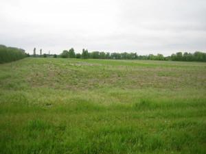 TBD Itasca Road, Albert Lea, MN 56007