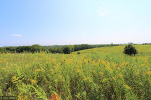 Lot 4, Blk 2, 9.59 acres Gorgeous Prairie Hill Acres!