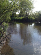 Straight River running on Western boundary of property