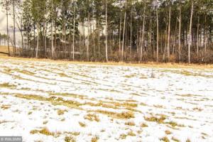 W982 Red Fox Run, Spring Valley, WI