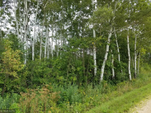 Lot 16 776th Avenue, Spring Valley, WI