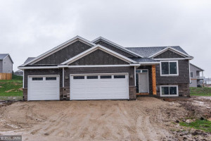 Fully Finished~4 bed, 3 Bath Split level home