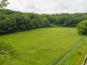 40 Acres 731843033450 Olmsted-001-001--MLS_Size