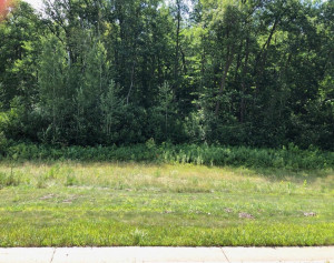 2800 Oakhurst Drive, Lake City, MN 55041