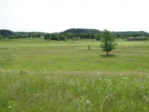 813 Hidden Meadow Lane, Lake City, MN 55041