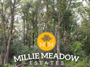 5028 Millie Road SW, Rochester, MN 55902