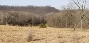 949 Hidden Meadow Lane, Lake City, MN 55041