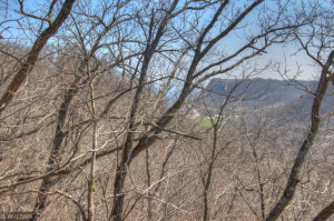 Panoramic view through the trees of the Mississippi River/Lake Pepin and bluffs in the distance.