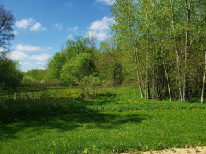 Lot 10 776th Avenue, Spring Valley, WI