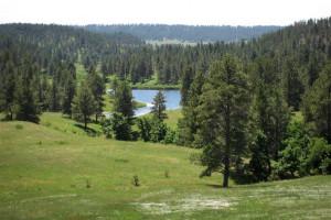 0 Bear Claw Trail,