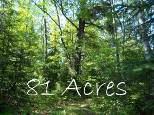 81 Acres Wontor Road, Amberg, WI 54102