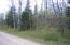 Peshtigo River Road, Laona, WI 54541