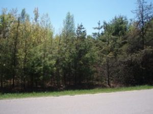 Rader Road, Marinette, WI 54143
